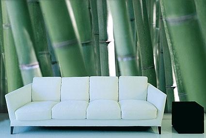 adsz-bamboo-002-425×286